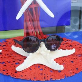 Luc Vision - ocean safari meduse