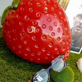 Strawberry - Luc Vision - Luc sur Mer